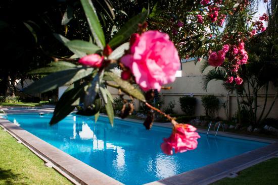 Photo of Hotel Puerta Del Sol Guadalajara