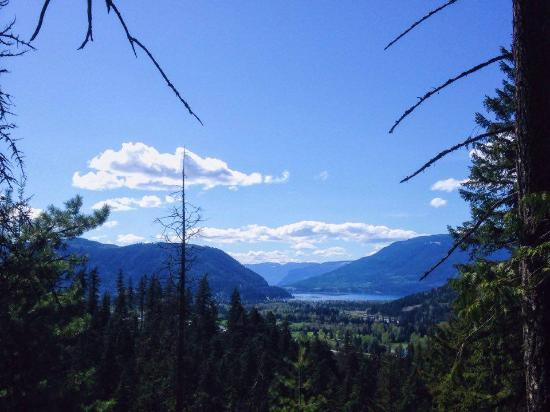 Sicamous, Canadá: View of the Shuswap Lake