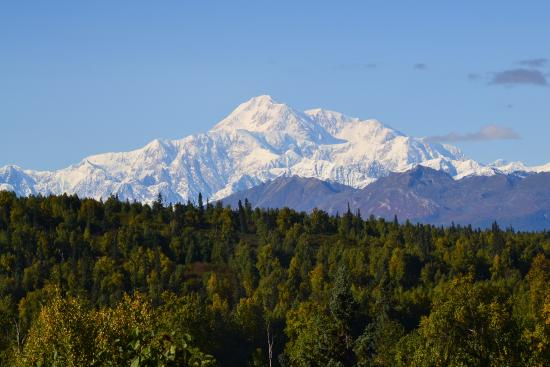Trapper Creek, AK: The view from the back deck of the main building