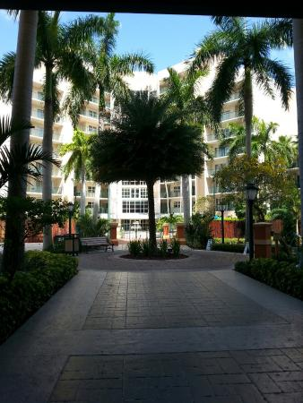 Wyndham Palm-Aire: 20160413_110947_large.jpg