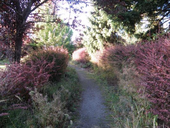 Esquimalt, Canadá: one of the paths through property