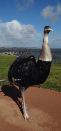 Meningie, Australia: photo0.jpg