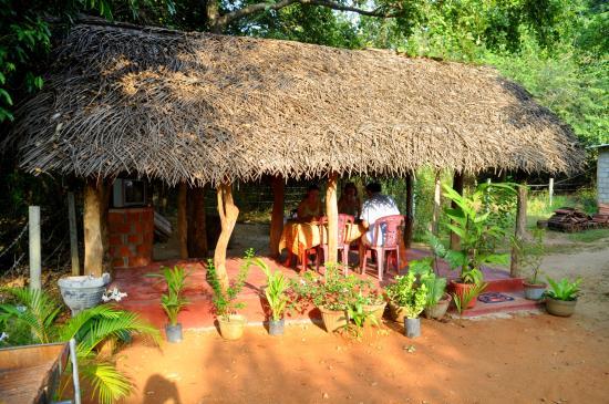 Samanala Guest House Photo