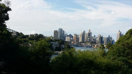 The Waverton North Sydney Club