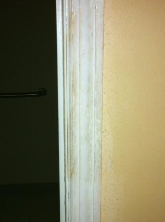 Baymont Inn & Suites Orangeburg: moldy or filthy door jam going into the bathroom
