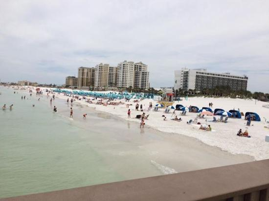 pier 60 at clearwater beach picture of pier 60 clearwater rh tripadvisor com