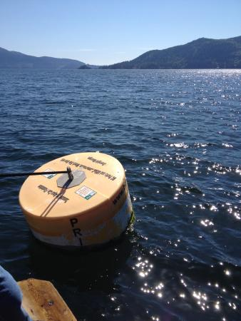 Horseshoe Bay, Canada: mid ship buoy