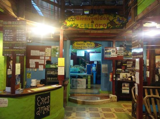 Casa Oro Eco Hostel