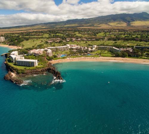 The Snorkel Black Rock Maui And Ka Anapali Beach