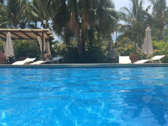 Gilded Iguana Hotel Foto
