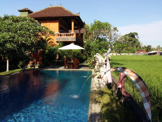 Mandala Desa: The View and Garden Suites overlook the swimming pool