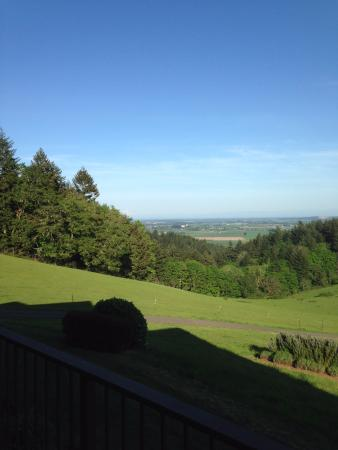 Youngberg Hill Vineyards & Inn: View of Mt Hood looking N/E from B&B