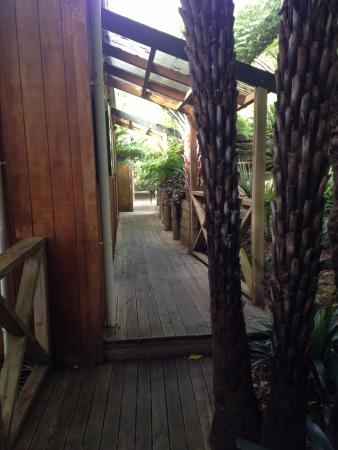 Anchor Lodge Coromandel: Walkway leading to our room