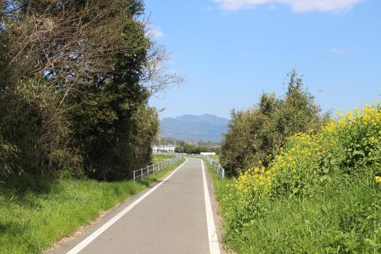 Yuka Family Road