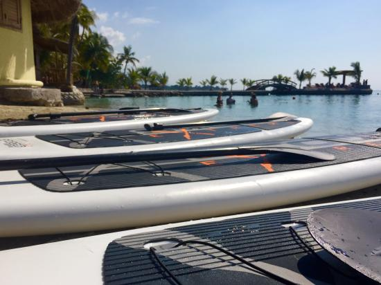 Moulin Sur Mer: Paddle boards