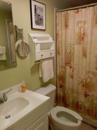 Austin Folk House Bed and Breakfast: Bathroom in Room 9