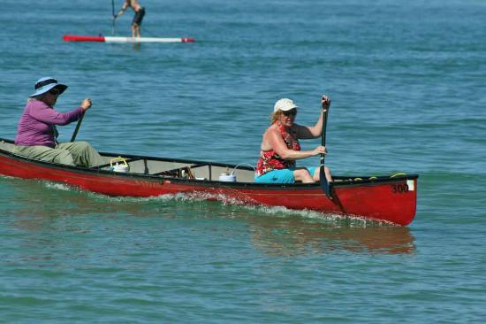 Honeymoon Island State Park: Great paddling destination
