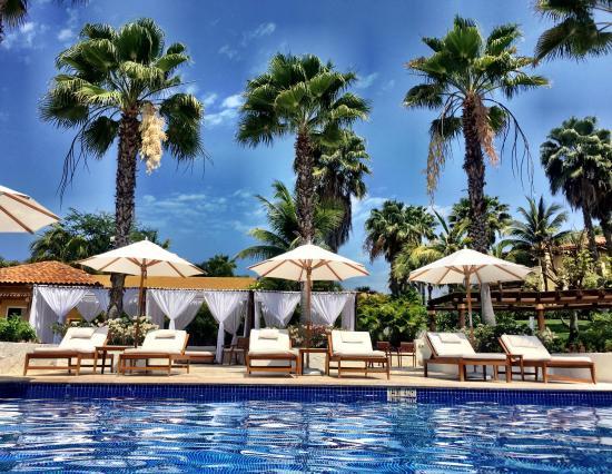 5 star paradise picture of the st regis punta mita resort punta rh tripadvisor com
