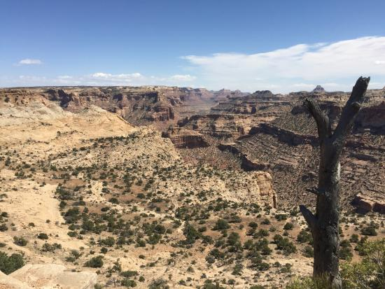 Castle Dale, UT: The Wedge 2