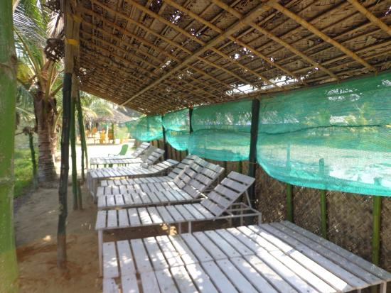 Vaikom, Ấn Độ: Relax in the side of natural river