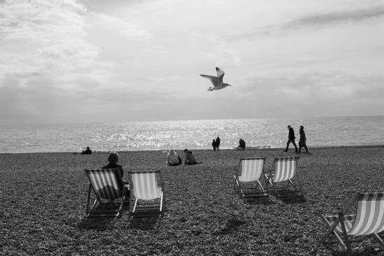 Sea Breeze Brighton: photo1.jpg
