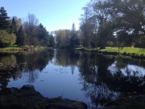 Thorpe le Soken, UK: Whilst enjoying a early morning walk