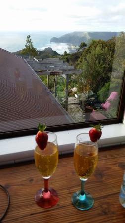 Piha, Nowa Zelandia: View from the kitchen, drinks were brought by us