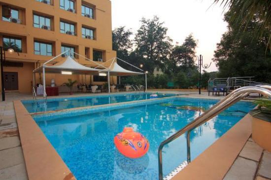 Pool - Hotel New Metropole Photo