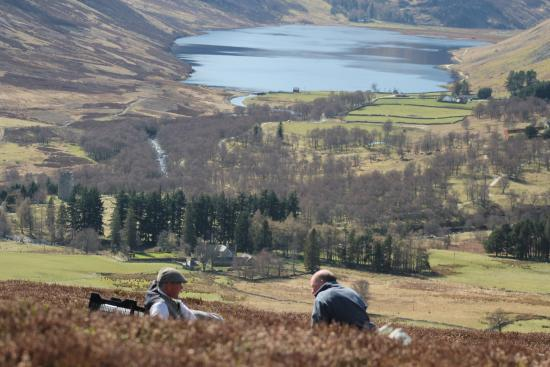 Glen Esk Wild Life Tours: The perfect picnic spot!