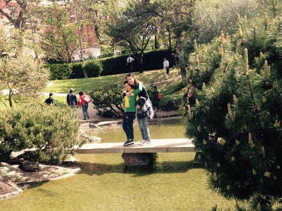 Giardino giapponese foto di giardino giapponese roma tripadvisor