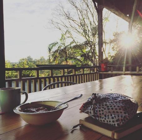 Bellingen YHA - Belfry Guesthouse : sunrise outlook from the deck
