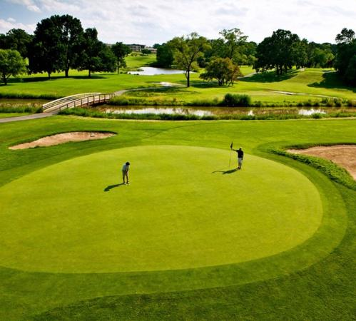 Itasca, IL: New Golf