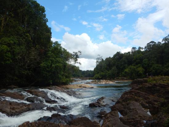 Endau-Rompin National Park: Kuala Jasin river
