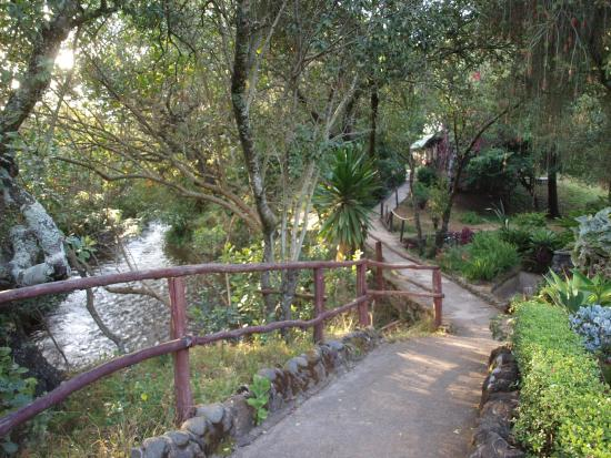 Naro Moru, Kenya: River side walking track