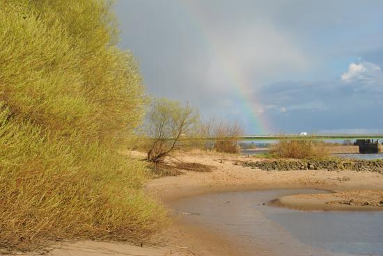 Geesthacht, Germany: Vogelfrei - ideal für Wasserliebhaber und Landgänger