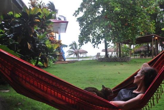 Playa Las Lajas, ปานามา: En la puerta de nuestra habitación que daba justo al jardín y a la piscina