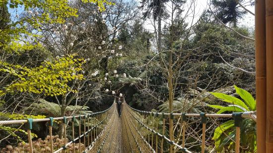 St Austell, UK: Lost Gardens of Heligan