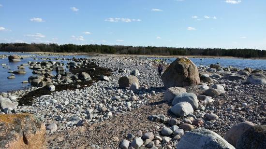 Kuusalu, Estonie: Purekkari Cape