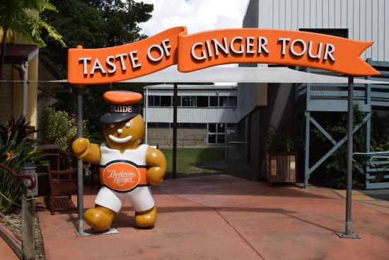 Yandina, Australia: The Ginger Tour