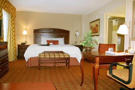 Moss Point, MS: Accessible King Room