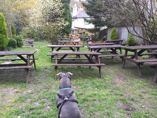 ‪‪The New Forest Inn‬: UPPER BEER GARDEN‬