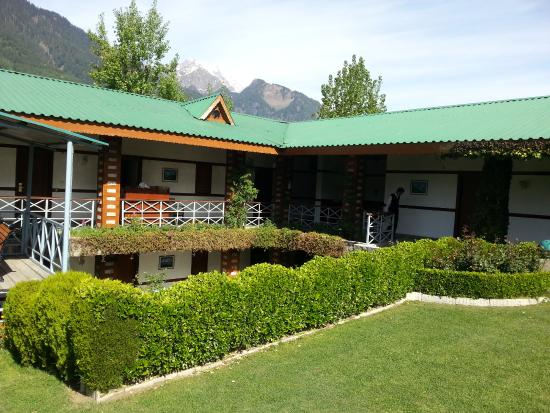 White Meadows - Manali: Lawn and hedges on -3 level