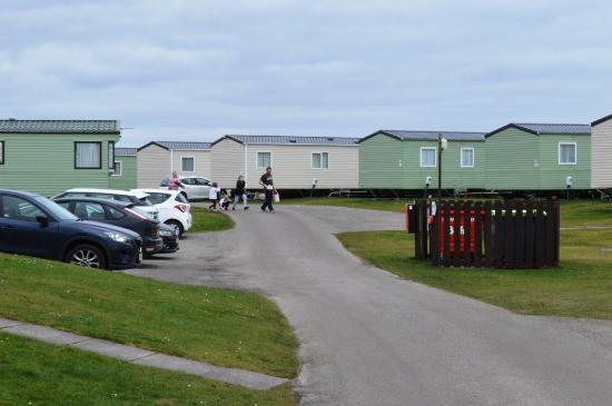 Grannie's Heilan' Hame Holiday Park: Caravans