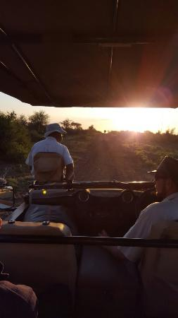 Madikwe Game Reserve, Sudáfrica: 20160410_174059_large.jpg