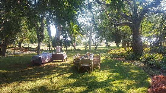Madikwe Game Reserve, Sudáfrica: 20160412_101900_large.jpg