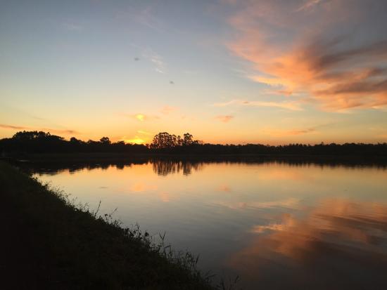 Lago Dourado
