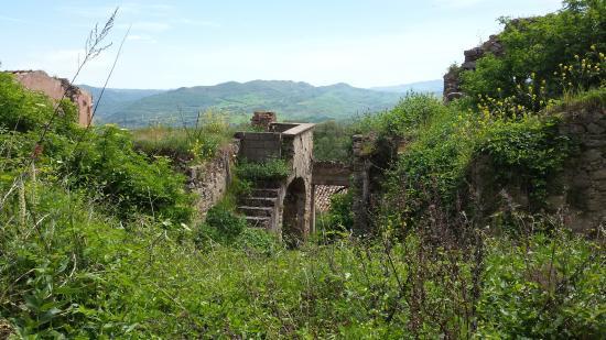 Calitri, Włochy: La natura prende il sopravvento