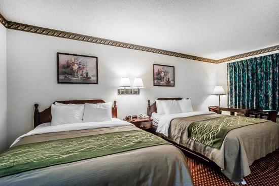 La Vergne, TN: Queen Room