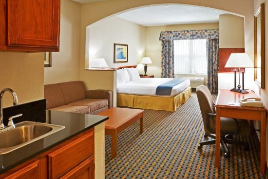 Holiday Inn Express Hotel & Suites Dallas/Stemmons Fwy(I-35 E): King Bed Guest Room