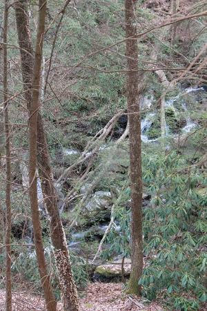 Chatsworth, Джорджия: Waterfall from trail